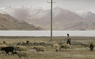 气候暖化后的西藏景象-雪白的山顶不再。(摄影:PETER PARKS/Getty Images)