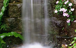 水是善良的,水是純正的,她從不說謊,也不會被人的利益所左右,因為她是用「心」看世界。(攝影:王嘉益 / 大紀元)