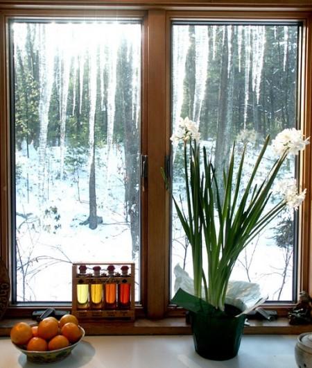 在家中輕輕鬆鬆享受新鮮空氣