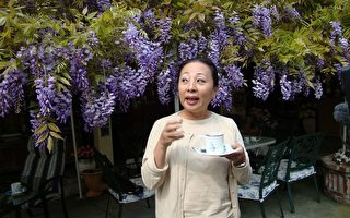 瑞里紫藤花之旅-给你带来无限惊奇