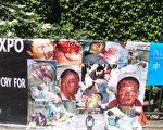 葛丽芳在纽约联合国大楼门前抗议,并贴出部分冤民受迫害致死的惨状。(葛丽芳提供图片)
