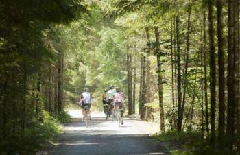 由蘇克市一路通往維多利亞市的飛雁步道,提供單車客和慢跑者,一條遠離擁擠交通的遊玩路徑。(攝影:Boomer Jerritt / Tourism Vancouver Island)