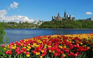 加首都渥太華一周新聞大事