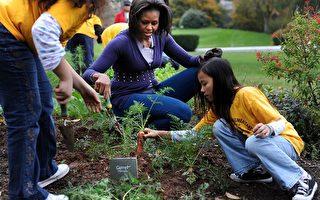 让孩子参与种植 可减少垃圾食物摄取