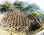 1999年以前,大陆法轮功学员在北京郊区戒台寺晨炼。(明慧网)
