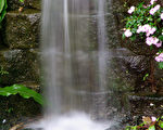 水是一种讯息载体。(摄影:王嘉益  / 大纪元)