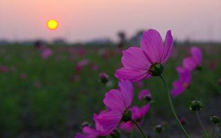 人生在世,无不想远灾近福,然而唯有行善积德,才能获得众神庇佑,拥有更美好的未来。(摄影:王嘉益 / 大纪元)