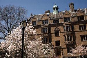 美研究所国际学生略增 中国增幅16%