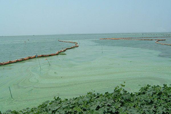 太湖告急 王維洛揭洪水形成的背後原因