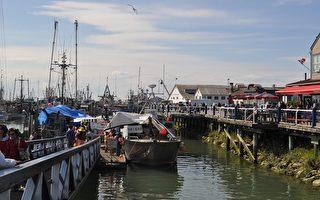 大温哥华列治文海洋节 渔人码头好热闹