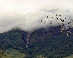 9月3日清晨,印尼北苏门答腊省的锡纳朋火山第三次喷发,规模比前两次更大,目前尚无人员伤亡和财产损失的报导。(图片来源:SUTANTA ADITYA/ AFP)