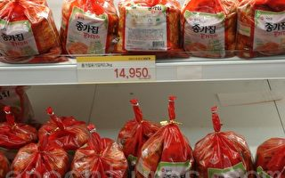 韓國欲緊急進口大白菜緩解「泡菜危機」
