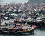 強颱「鯰魚」預計22日夜間正面襲擊廣東,為防禦風災,廣東海南7萬艘漁船回港避風。圖為香港大部份出海捕魚漁船已回避風塘避風。(ANTONY DICKSON/AFP/Getty Images)