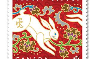 兔年邮票以一只跳跃的白兔为主题,设计侧重在表达中国新年的喜庆气氛,预定在明年1月7日首发。( 加拿大邮票局提供)