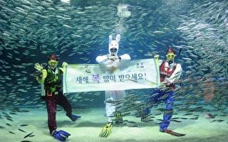 """三位潜水员展示一条写着韩语""""新年快乐""""的横幅(AFP PHOTO / PARK JI-HWAN)"""
