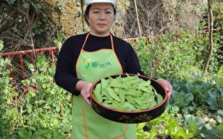 奋起湖祖母级的陈素抹以当地新鲜食材做料理,令老饕大快朵颐。(摄影:苏泰安/大纪元)