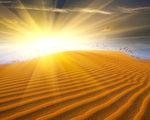 如果人体真是一个小宇宙的话,一粒沙中有三千大千世界也就不足为奇。(摄影:Pavel Klimenko/Fotolia)