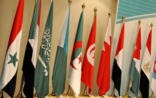 图为阿拉伯国家的国旗。(AFP)