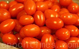 小番茄大惊喜
