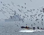 图为一艘作业渔船经过韩国军舰。(KIM JAE-HWAN/AFP/Getty Images)