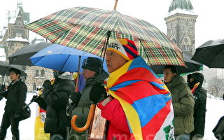 加拿大國會議員冒雨支持西藏人權運動
