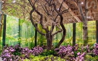 加拿大花卉展 名歌唱家花園獲獎