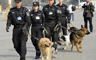 大陆公安权限加强被指暴力化管理的开端