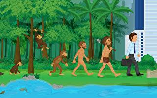 透视进化论