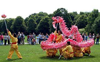 """慕尼黑华文学校5日在慕尼黑市西公园举办""""台湾100园游会"""",活灵活现的舞龙表演获得热烈掌声。(驻慕尼黑新闻处提供照片)"""
