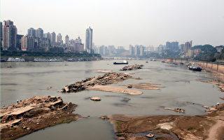 重慶網絡特區被稱「華人與狗不得入內」