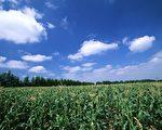 草原上有个古老的传说,只要一直往东走就能找到修炼之术。(摄影: 大纪元)