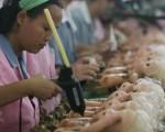 几个月来,珠三角不少企业相继倒闭。图为广州一家玩具制造厂。(Feng Li/Getty Images)