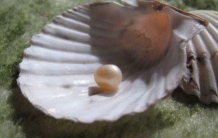 喬伊的珍珠。(正見網)
