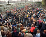 1989年11月11日,西柏林民众在波茨坦广场(Potsdamer Square)附近试图推倒柏林墙。(法新社)