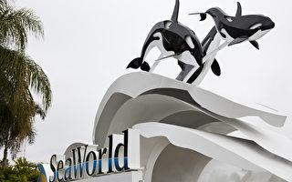 奥兰多海洋世界 将新增3景点