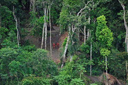巴西亞馬遜河流域的熱帶雨林(Gleison Miranda/AFP ImageForum)