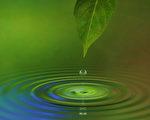 水有超能力?還是人的善願產生奇蹟?