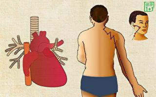 下午1點喝水淨化血液 養好小腸經能防心臟病