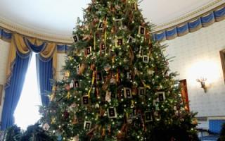 組圖:2011年白宮聖誕樹閃亮登場