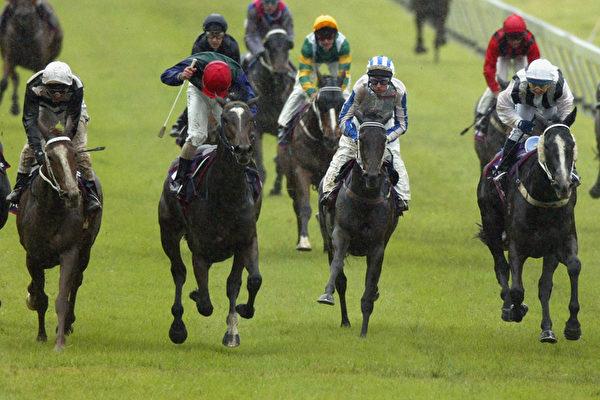 在Morphettville赛马场举行的阿德雷德杯大赛。(Tony Lewis/Getty Images)