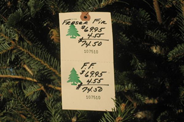 聖誕節話聖誕樹