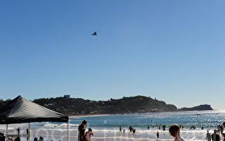 澳洲纽省中海岸警报 四米大鲨鱼出没