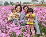 莿桐花海节15日开幕,吸引不少民众阁家前来赏花。(摄影:廖素贞/大纪元)