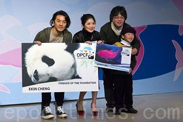 基金会吁保护中华白海豚