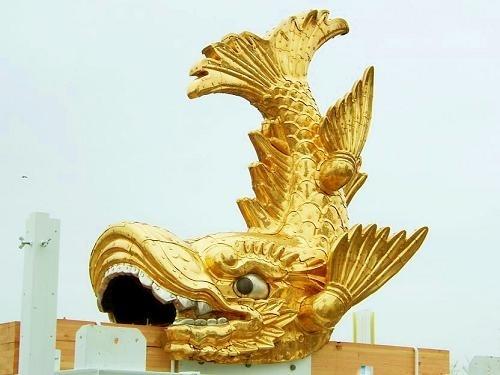 名古屋城的护城神兽金。(图片/Wikipedia)