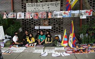 西藏團體在悉尼中領館前抗議人權迫害
