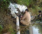 村民称,临安环保局大队长现场查获不经处理直接排污的行为,但一直没有处理结果。(村民提供)
