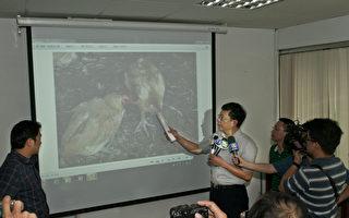 家畜疾病防治所所长张鸿猷(右)表示,典型的禽流感鸡冠还有鸡脚会发紫的症状,从这次鸡只异常死亡的外观来看,并不像典型的禽流感。(县府提供)
