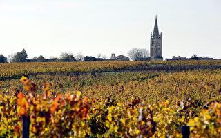 全球十大最珍貴瀕危地點 葡萄酒產區(3)