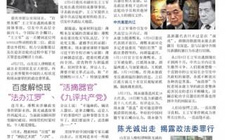 真相特刊-揭密王立军事件(5月更新版)